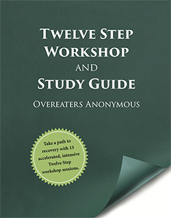 Twelve Step Workshop and Study Guide